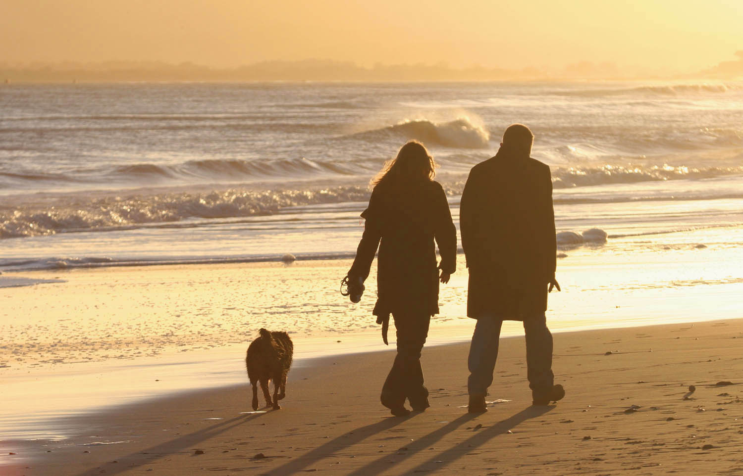 Man And Woman Walking A Dog On A Beach In Suffolk